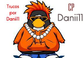 banner-firma-danii